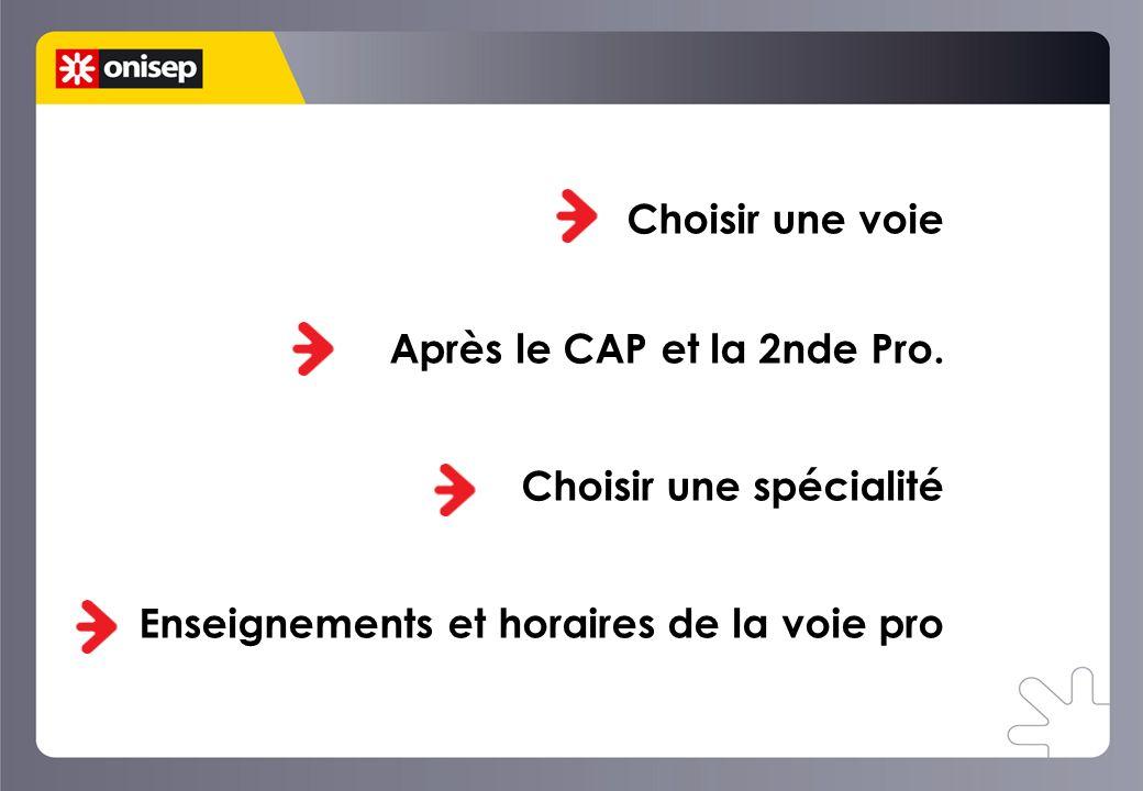 Choisir une voie Après le CAP et la 2nde Pro.