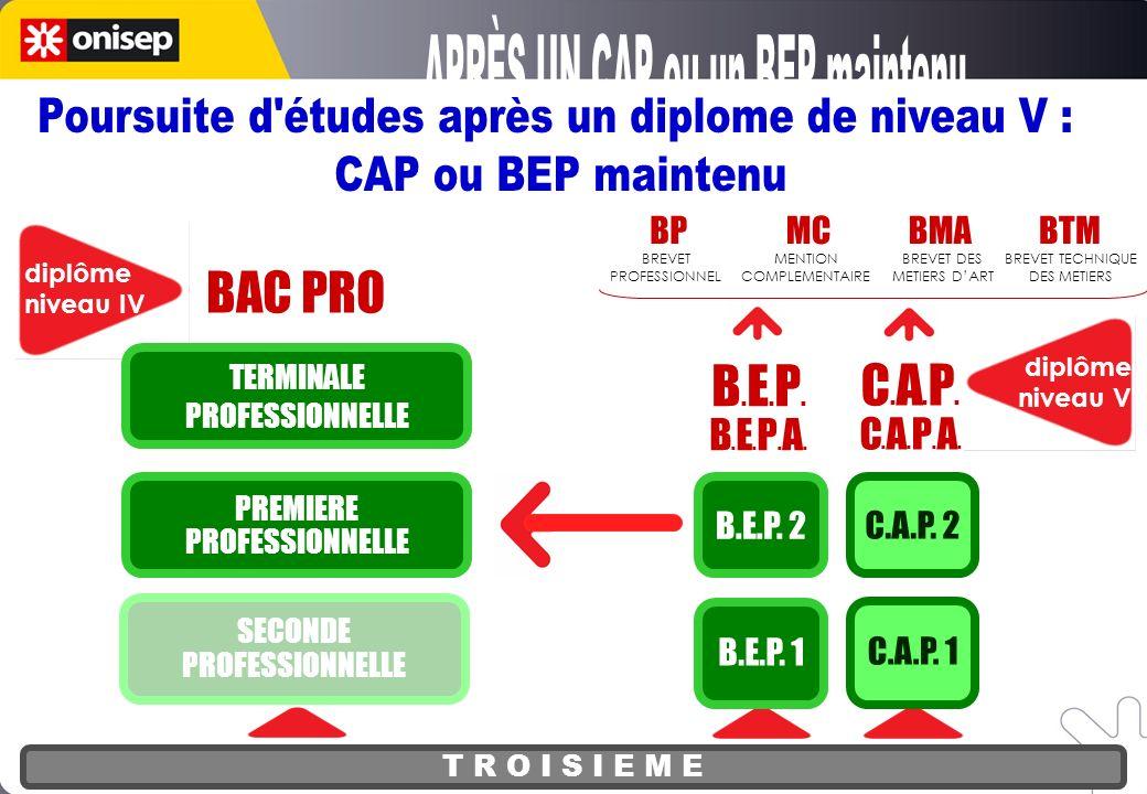 T R O I S I E M E BAC PRO diplôme niveau IV SECONDE PROFESSIONNELLE PREMIERE PROFESSIONNELLE TERMINALE PROFESSIONNELLE diplôme niveau V C.A.P.C.A.P.A.C.A.P.C.A.P.A.