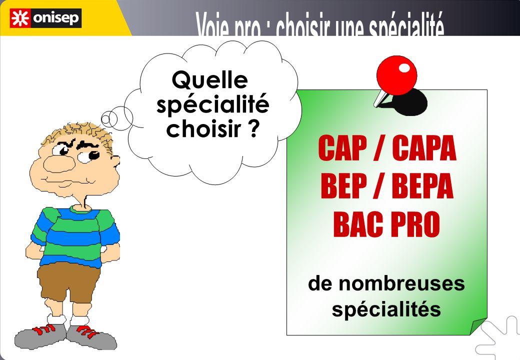 de nombreuses spécialités Quelle spécialité choisir ? CAP / CAPA BEP / BEPA BAC PRO