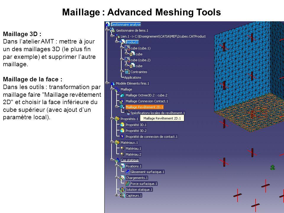 Maillage 3D : Dans latelier AMT : mettre à jour un des maillages 3D (le plus fin par exemple) et supprimer lautre maillage. Maillage de la face : Dans