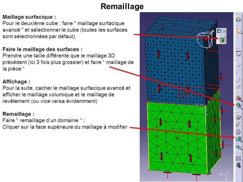 Remaillage (suite) : Cliquer sur le maillage de revêtement (le choisir dans larbre ne marche pas), choisir la méthode Projection et Impacter les domaines voisins.