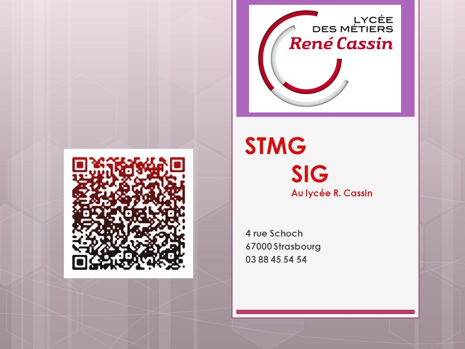 STMG SIG Au lycée R. Cassin 4 rue Schoch 67000 Strasbourg 03 88 45 54 54