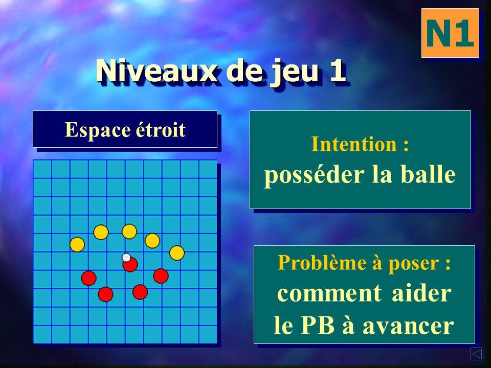 Niveaux de jeu 1 N1 Espace large Intention : se sauvegarder Intention : se sauvegarder Problème à poser : comment faire avancer la balle Problème à po