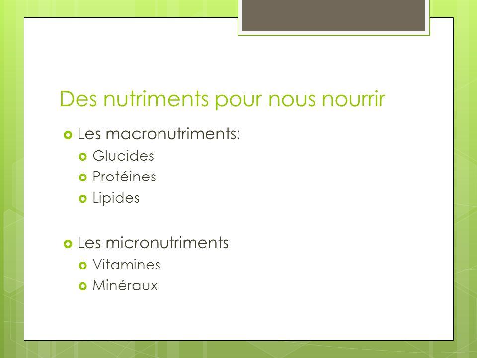 Des nutriments pour nous nourrir Les macronutriments: Glucides Protéines Lipides Les micronutriments Vitamines Minéraux