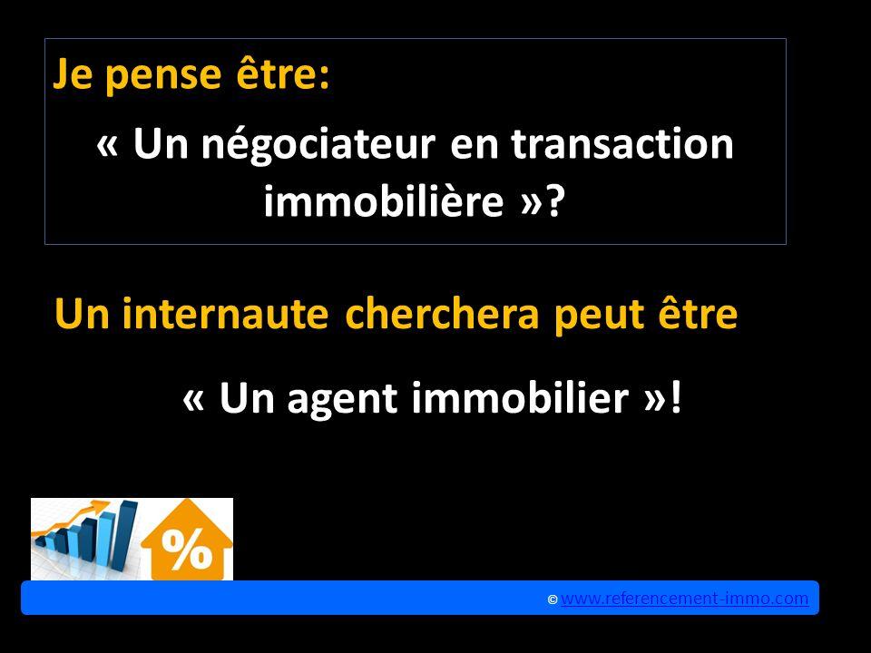 Je pense être: « Un négociateur en transaction immobilière ».