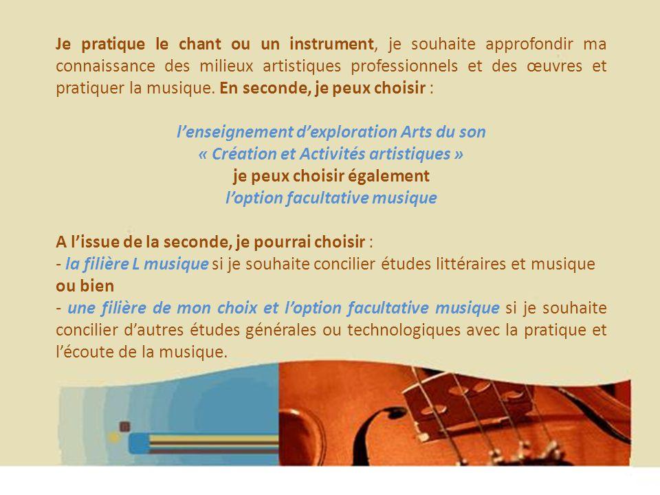 Hélène WAGNER 2013 Je pratique le chant ou un instrument, je souhaite approfondir ma connaissance des milieux artistiques professionnels et des œuvres