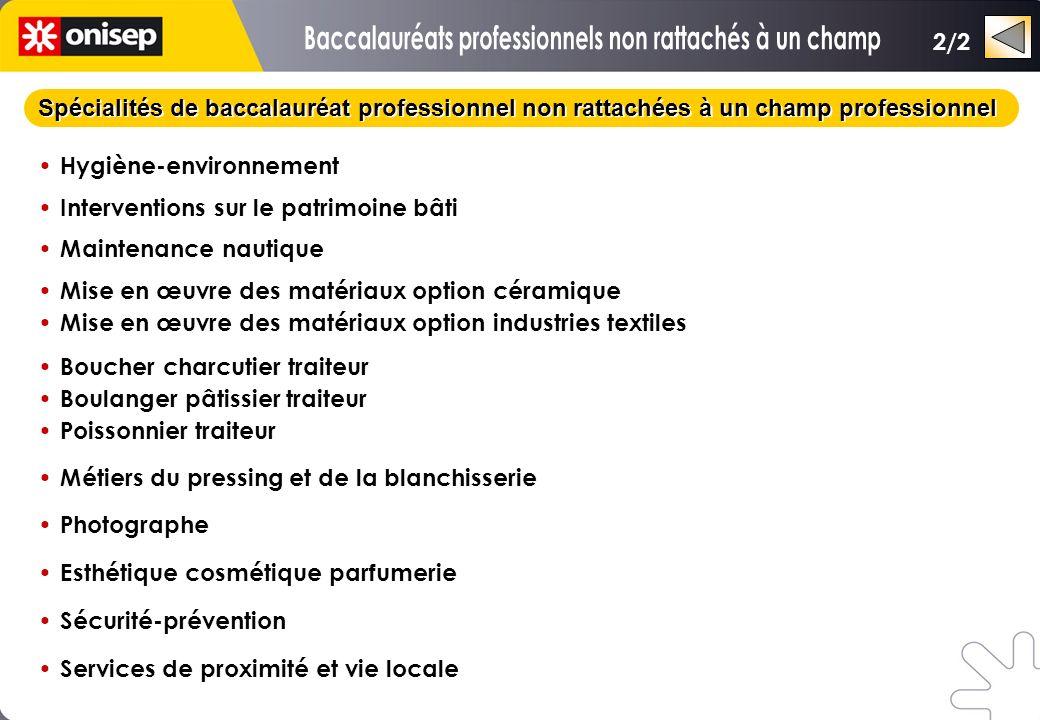 Spécialités de baccalauréat professionnel non rattachées à un champ professionnel Hygiène-environnement Interventions sur le patrimoine bâti Maintenan