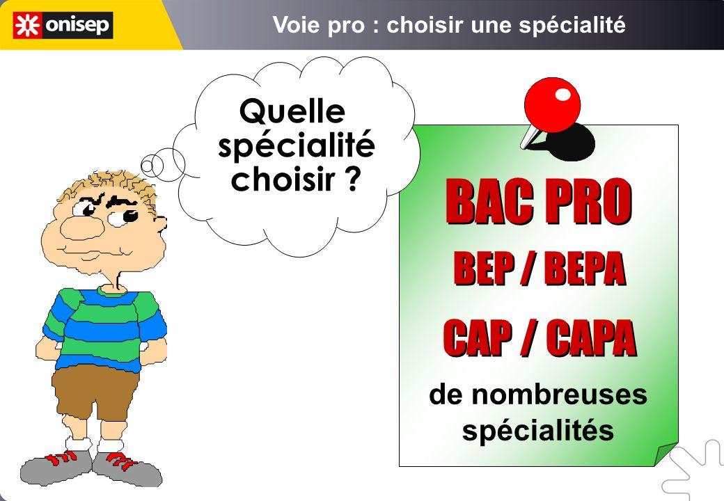de nombreuses spécialités Quelle spécialité choisir ? BAC PRO BEP / BEPA CAP / CAPA BAC PRO BEP / BEPA CAP / CAPA