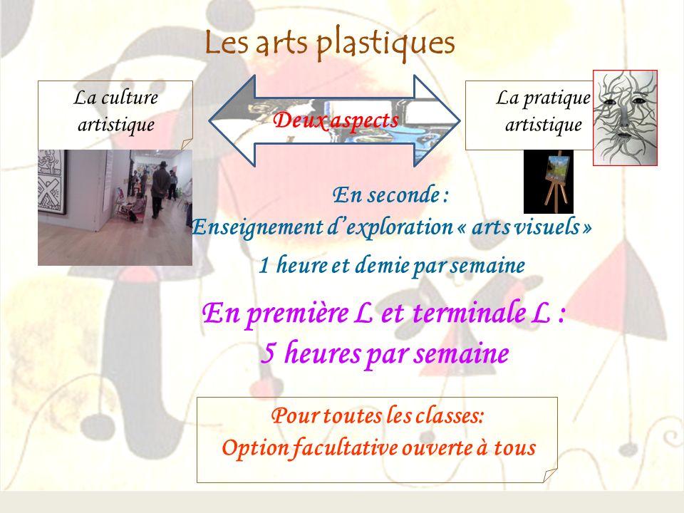 Les arts plastiques Deux aspects La pratique artistique En seconde : Enseignement dexploration « arts visuels » 1 heure et demie par semaine Pour tout