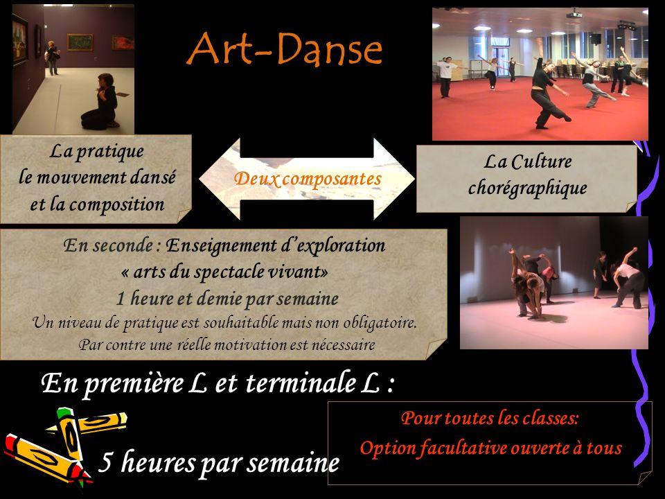 En seconde : Enseignement dexploration « arts du spectacle vivant» 1 heure et demie par semaine Un niveau de pratique est souhaitable mais non obligat