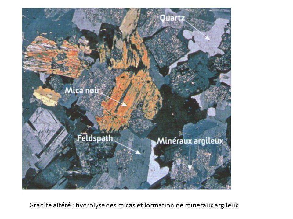 Granite altéré : hydrolyse des micas et formation de minéraux argileux