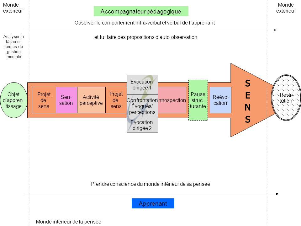 Evocation dirigée 1 Projet de sens Sen- sation Activité perceptive Projet de sens Confrontation Évoqués/ perceptions Evocation dirigée 2 Introspection