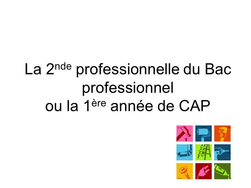 La 2 nde professionnelle du Bac professionnel ou la 1 ère année de CAP