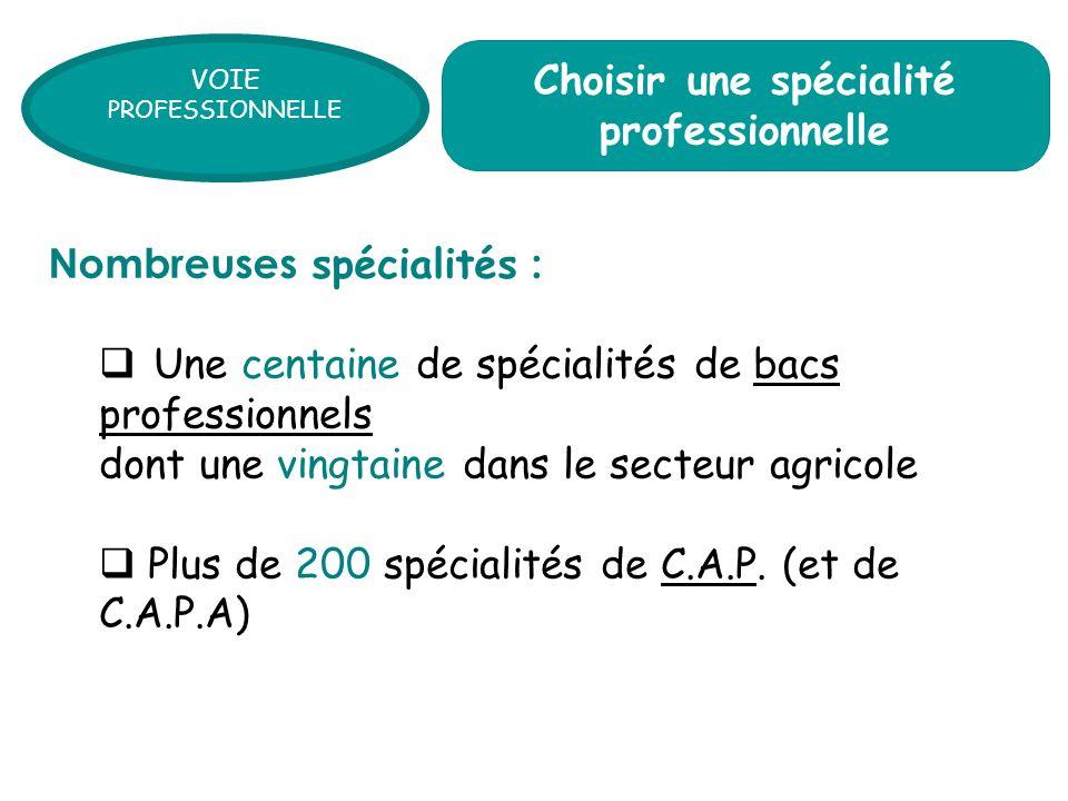 Une centaine de spécialités de bacs professionnels dont une vingtaine dans le secteur agricole Plus de 200 spécialités de C.A.P. (et de C.A.P.A) Nombr