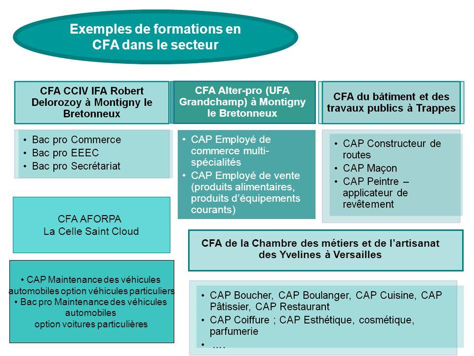 Exemples de formations en CFA dans le secteur CFA Alter-pro (UFA Grandchamp) à Montigny le Bretonneux CAP Employé de commerce multi- spécialités CAP E