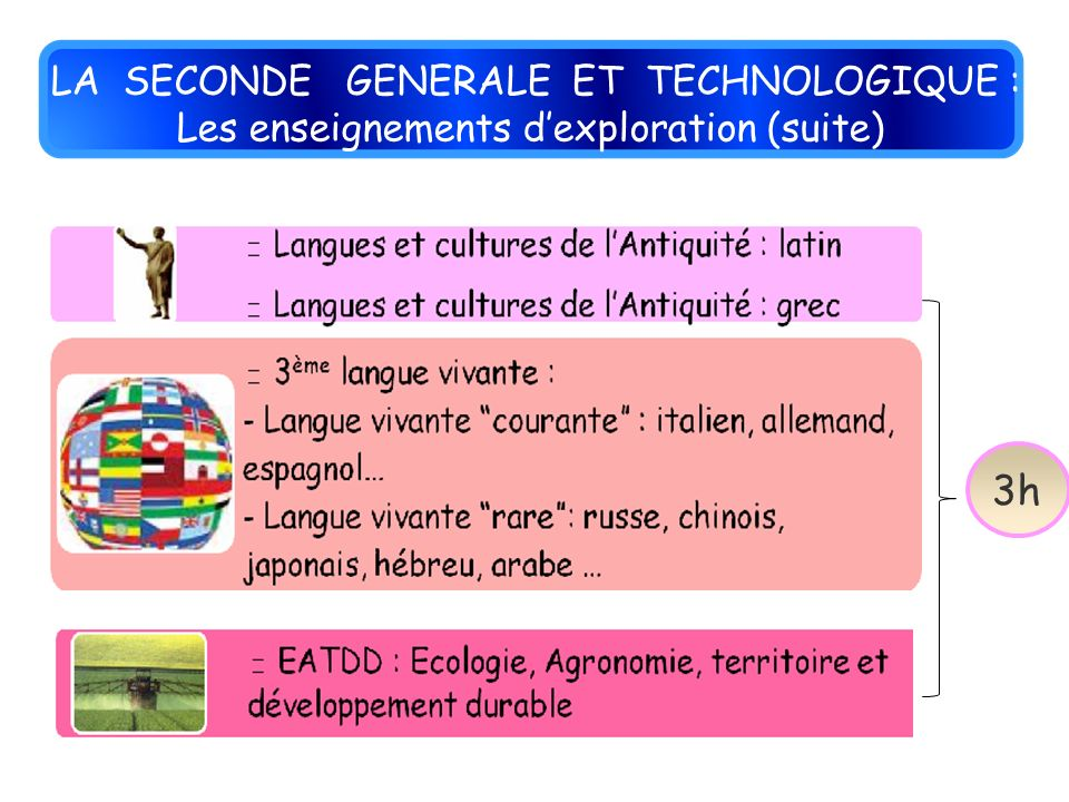LA SECONDE GENERALE ET TECHNOLOGIQUE : Les enseignements dexploration (suite) 3h