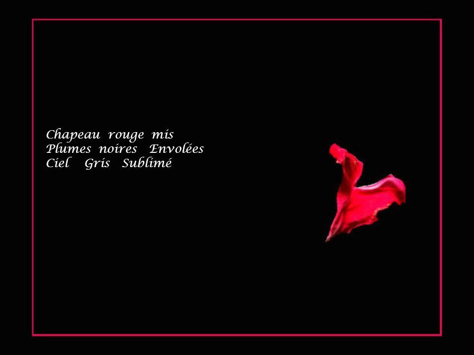 Chapeau rouge mis Plumes noires Envolées Ciel Gris Sublimé