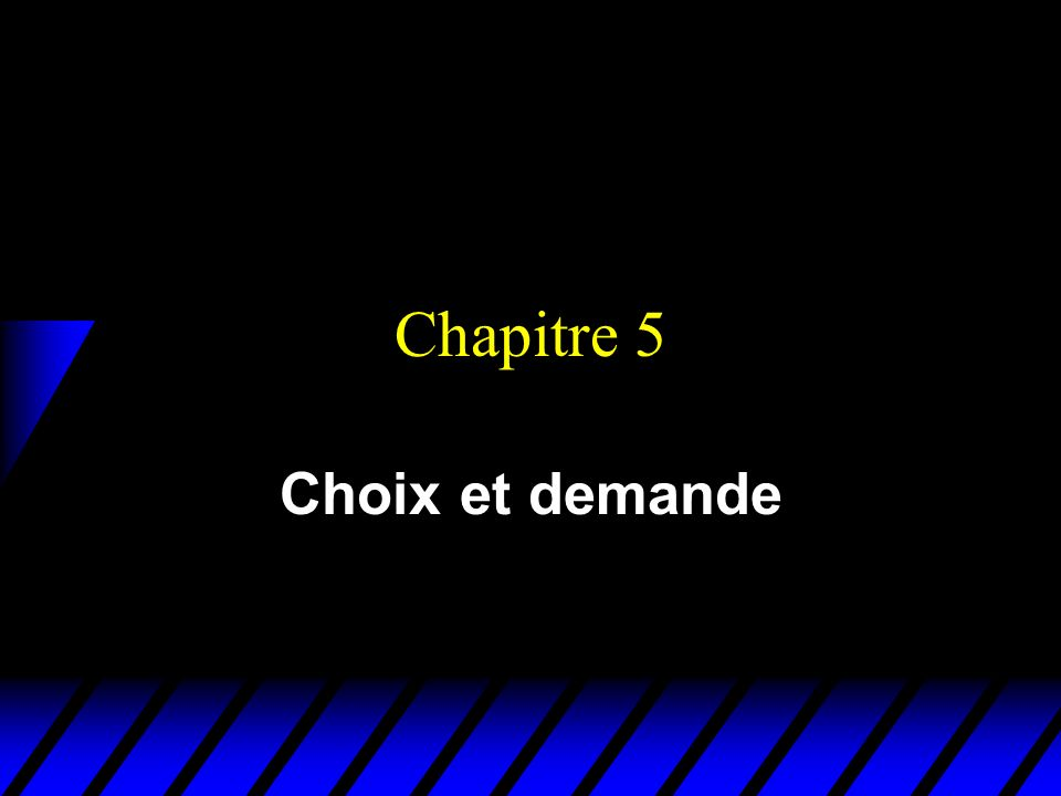 Chapitre 5 Choix et demande