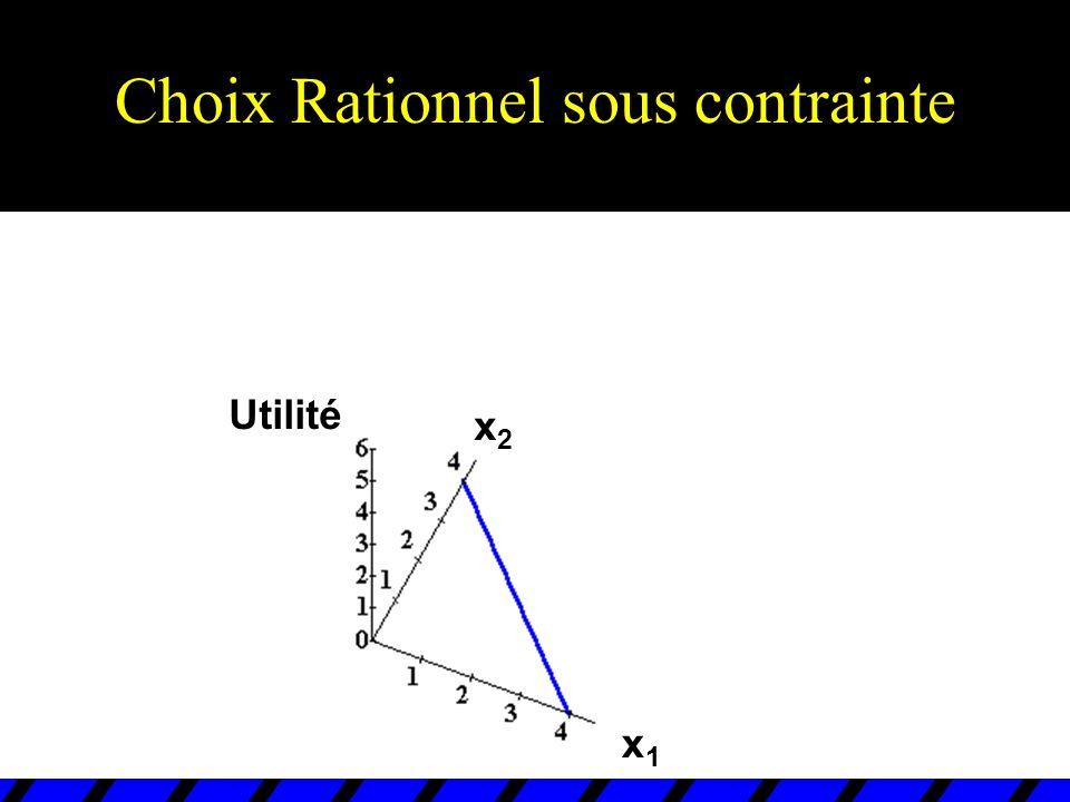 Choix rationnel sous contrainte u Lorsque C = R n + et x i * > 0 pour tous les biens i, le panier demandé est dit INTERIEUR.