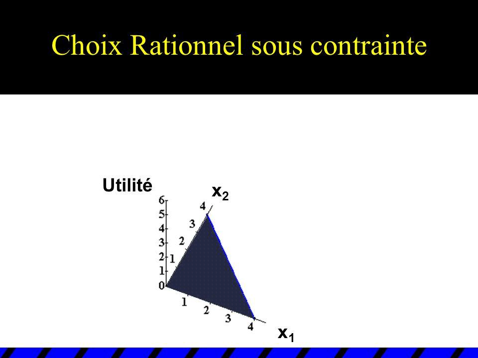 Choix Rationel sous-contrainte x1x1 x2x2 x1*x1* x2*x2* (x 1 *,x 2 *) est intérieur.
