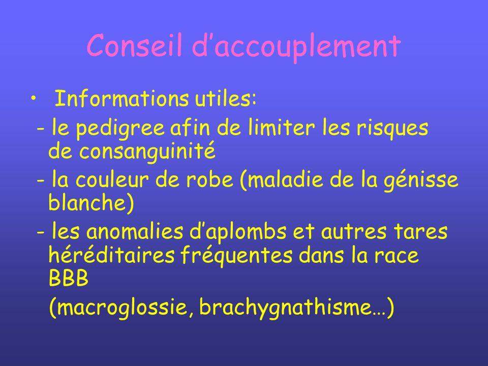 Conseil daccouplement Informations utiles: - le pedigree afin de limiter les risques de consanguinité - la couleur de robe (maladie de la génisse blan