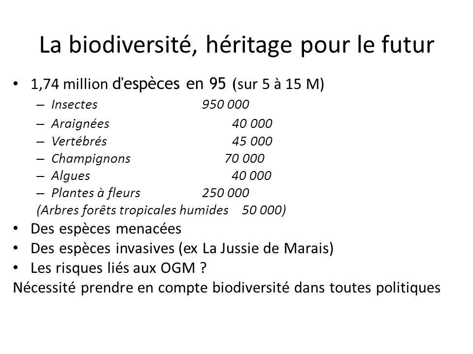 La biodiversité, héritage pour le futur 1,74 million d'espèces en 95 ( sur 5 à 15 M) – Insectes 950 000 – Araignées 40 000 – Vertébrés 45 000 – Champi