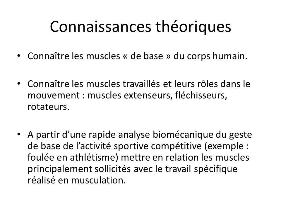 Connaissances théoriques Connaissances en musculation : Connaître sa charge maximale sur chaque exercice.