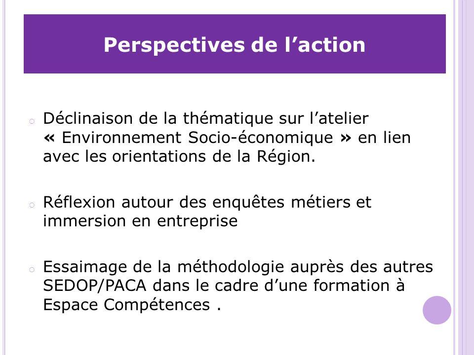 Perspectives de laction o Déclinaison de la thématique sur latelier « Environnement Socio-économique » en lien avec les orientations de la Région.
