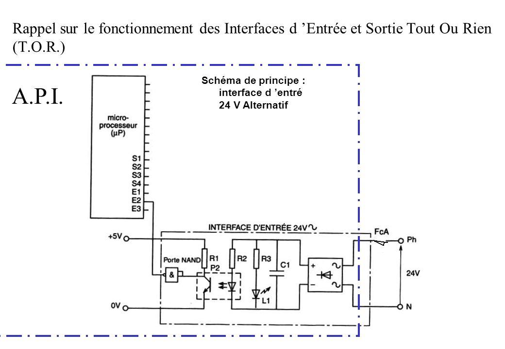 Rappel sur le fonctionnement des Interfaces d Entrée et Sortie Tout Ou Rien (T.O.R.) Schéma de principe : interface d entré 24 V Alternatif A.P.I.