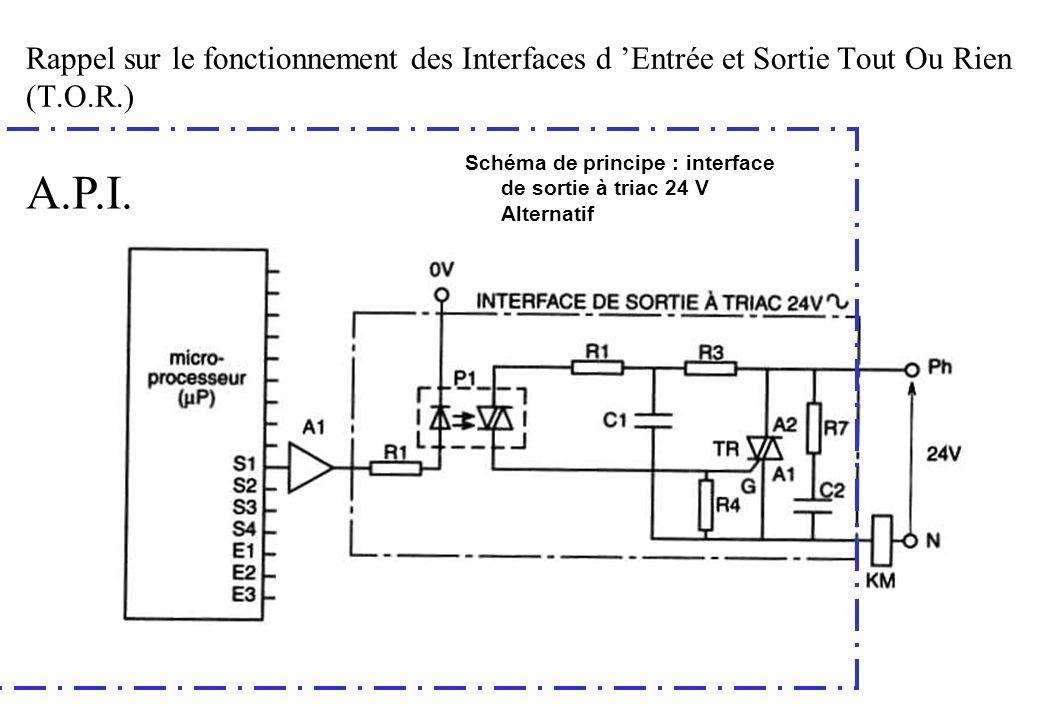 Schéma de principe : interface de sortie à triac 24 V Alternatif A.P.I. Rappel sur le fonctionnement des Interfaces d Entrée et Sortie Tout Ou Rien (T