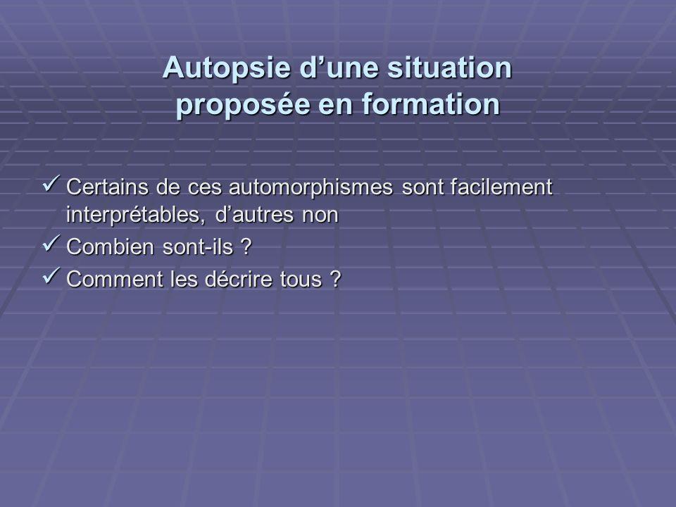 Autopsie dune situation proposée en formation Certains de ces automorphismes sont facilement interprétables, dautres non Certains de ces automorphismes sont facilement interprétables, dautres non Combien sont-ils .