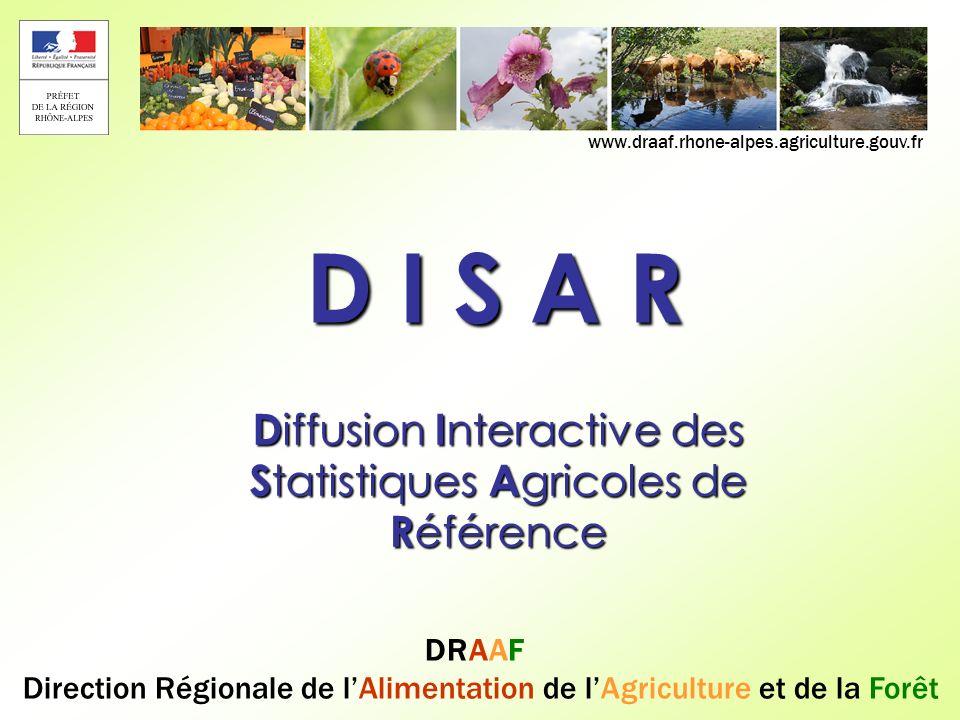 DRAAF Rhône-Alpes 12 DISAR – RA 2010 – Mise en forme – Choix des modalités La liste des champs géographique se déroule en dépliant les croix rouges : Une fois les champs sélectionnés (cochés), cliquer sur « OK »