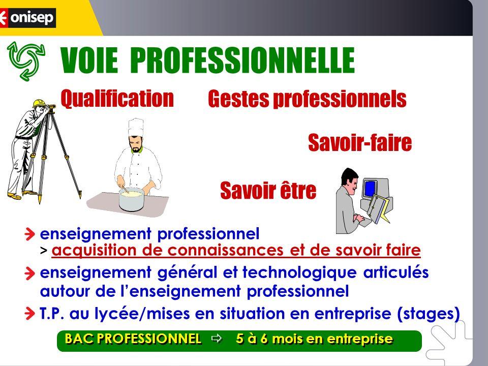 enseignement professionnel > acquisition de connaissances et de savoir faire enseignement général et technologique articulés autour de lenseignement p