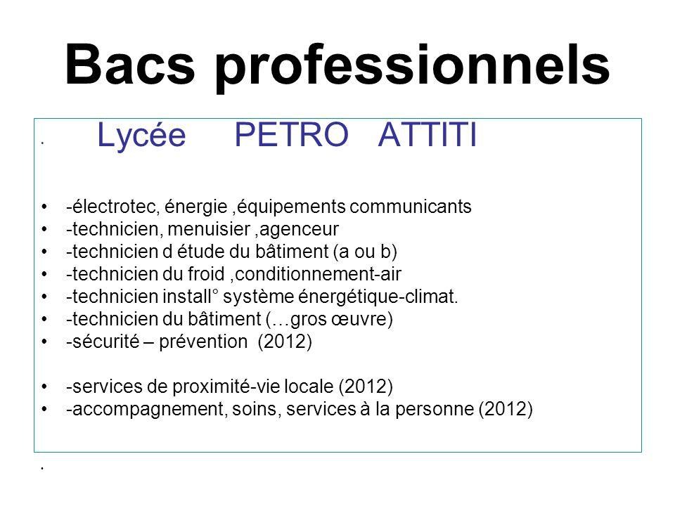 Bacs professionnels Lycée PETRO ATTITI -électrotec, énergie,équipements communicants -technicien, menuisier,agenceur -technicien d étude du bâtiment (