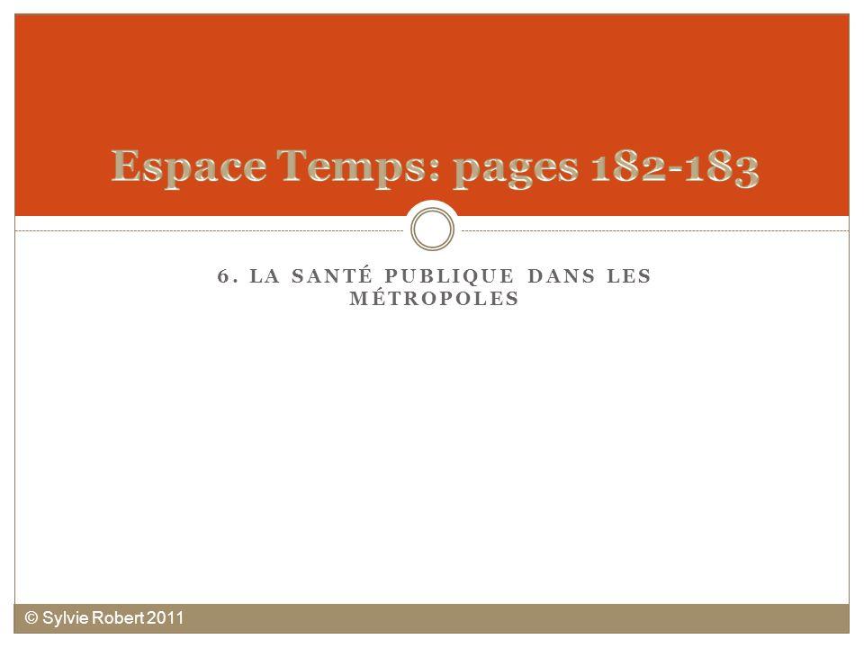 6. LA SANTÉ PUBLIQUE DANS LES MÉTROPOLES © Sylvie Robert 2011
