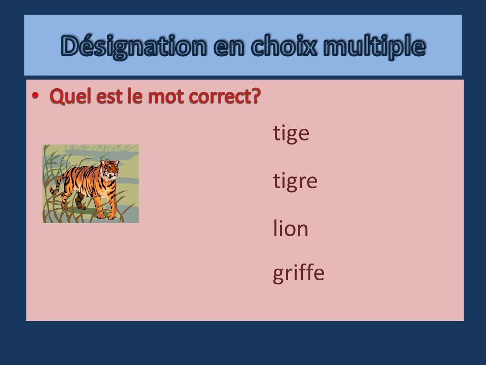 griffe lion tigre tige