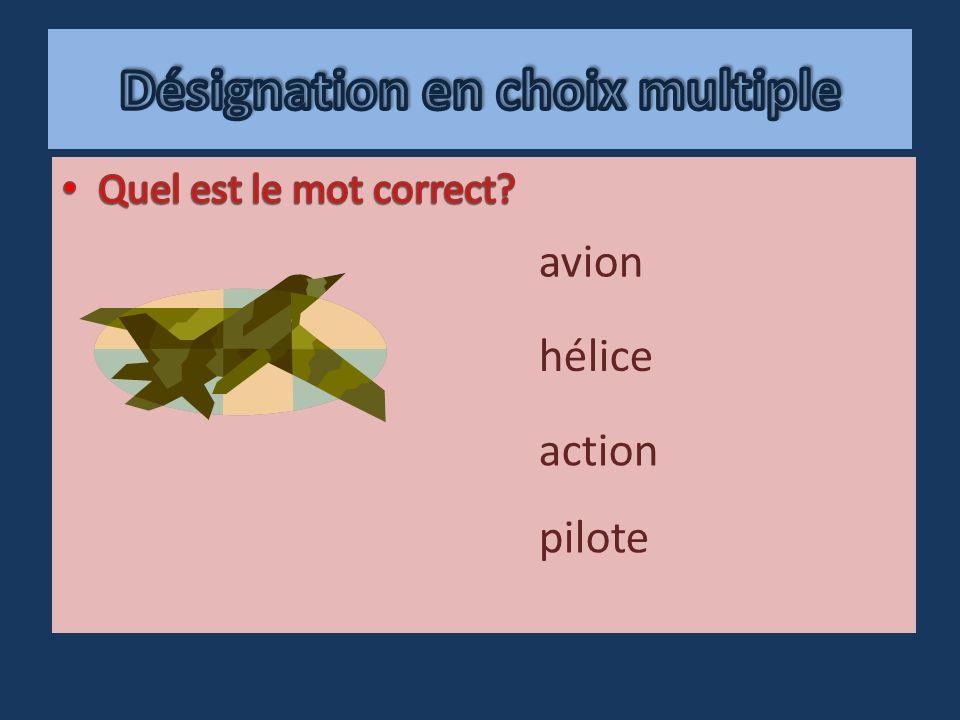 pilote action hélice avion