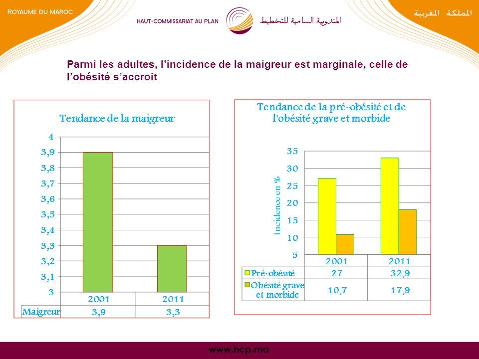 www.hcp.ma Parmi les adultes, lincidence de la maigreur est marginale, celle de lobésité saccroit