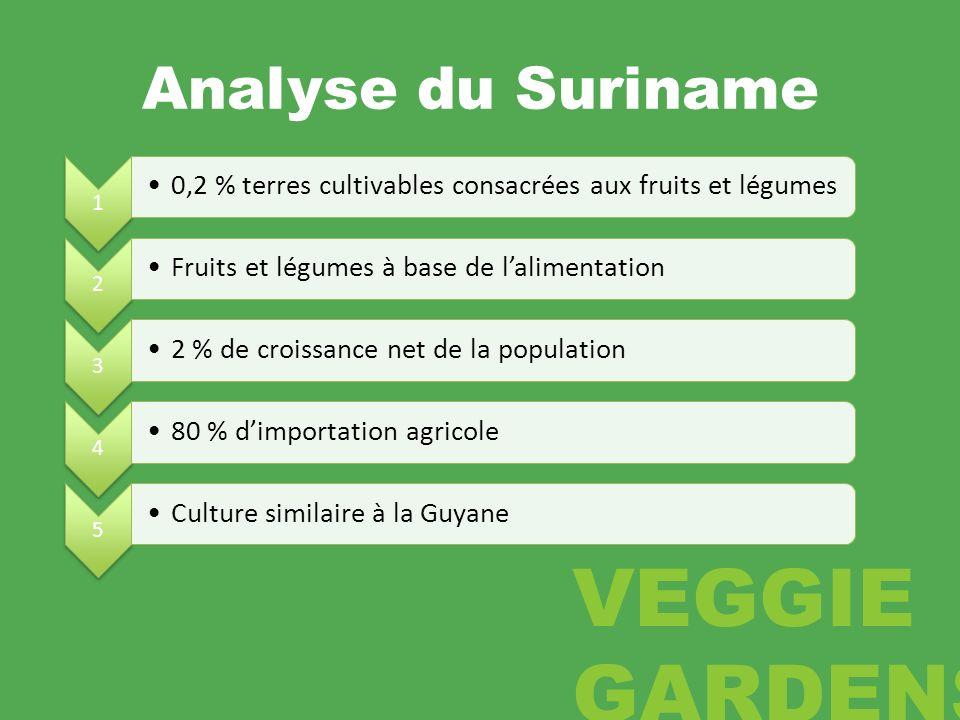 Analyse du Suriname 1 0,2 % terres cultivables consacrées aux fruits et légumes 2 Fruits et légumes à base de lalimentation 3 2 % de croissance net de