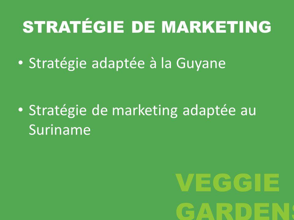 STRATÉGIE DE MARKETING Stratégie adaptée à la Guyane Stratégie de marketing adaptée au Suriname