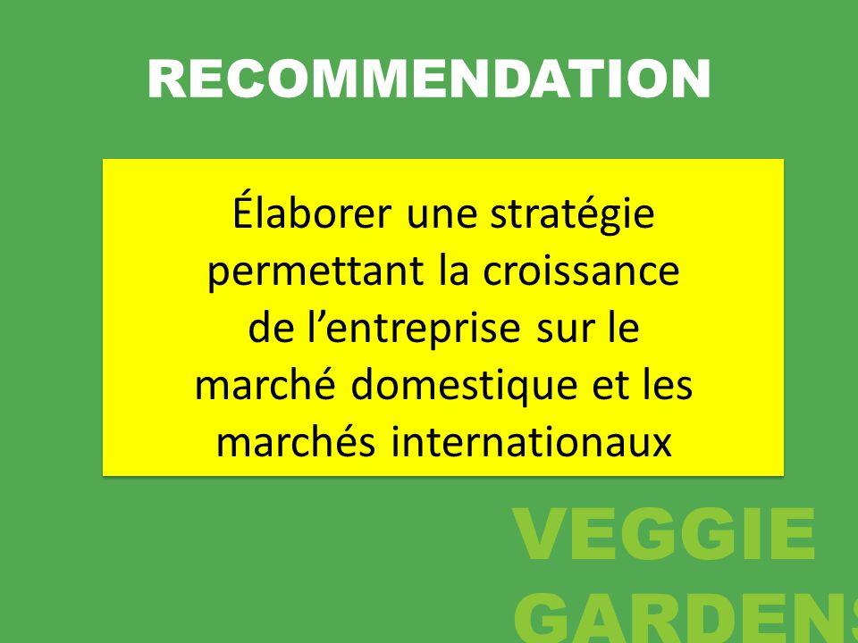 RECOMMENDATION Élaborer une stratégie permettant la croissance de lentreprise sur le marché domestique et les marchés internationaux