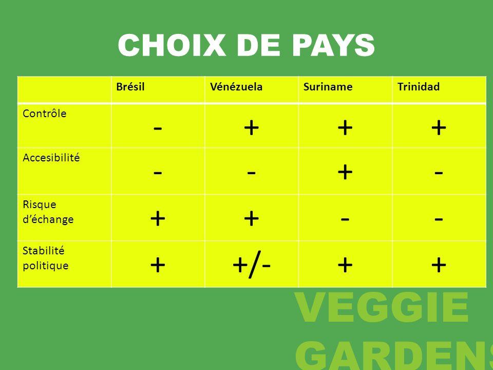 CHOIX DE PAYS BrésilVénézuelaSurinameTrinidad Contrôle -+++ Accesibilité --+- Risque déchange ++-- Stabilité politique ++/-++