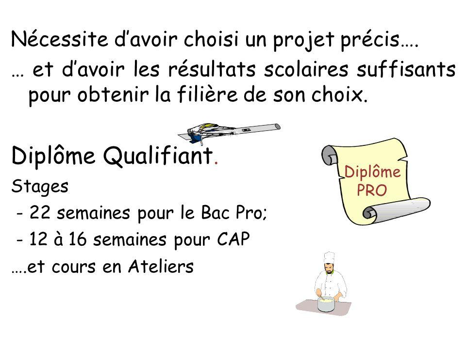 Nécessite davoir choisi un projet précis…. … et davoir les résultats scolaires suffisants pour obtenir la filière de son choix. Diplôme Qualifiant. St