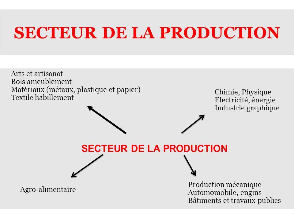 SECTEUR DE LA PRODUCTION Chimie, Physique Electricité, énergie Industrie graphique Production mécanique Automomobile, engins Bâtiments et travaux publ