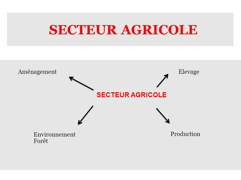 SECTEUR AGRICOLE Elevage Production Aménagement Environnement Forêt
