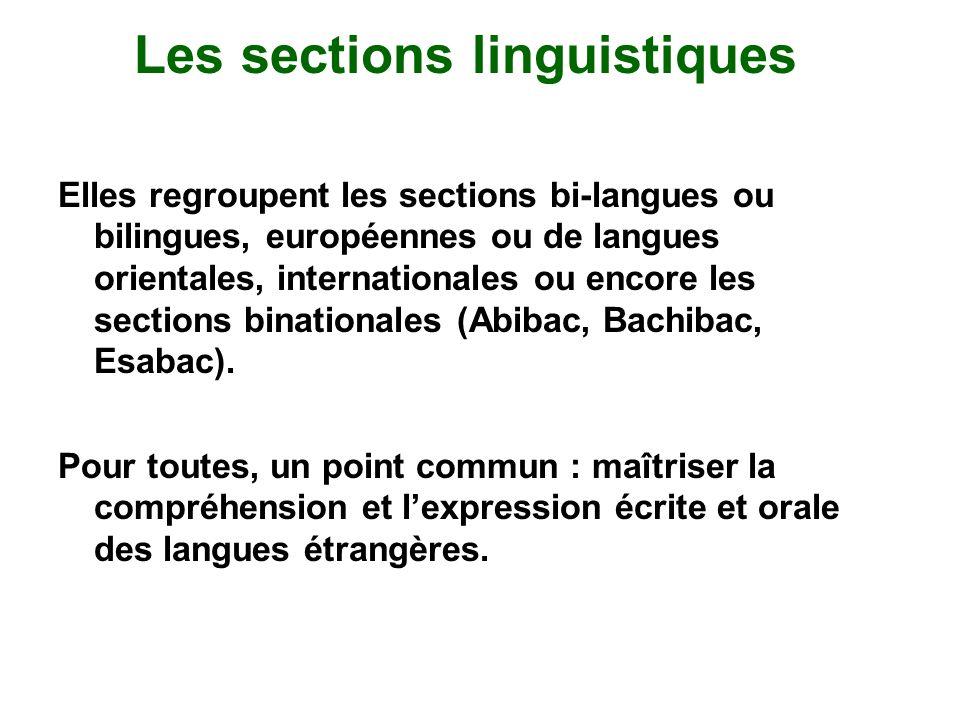 Les sections linguistiques Elles regroupent les sections bi-langues ou bilingues, européennes ou de langues orientales, internationales ou encore les sections binationales (Abibac, Bachibac, Esabac).