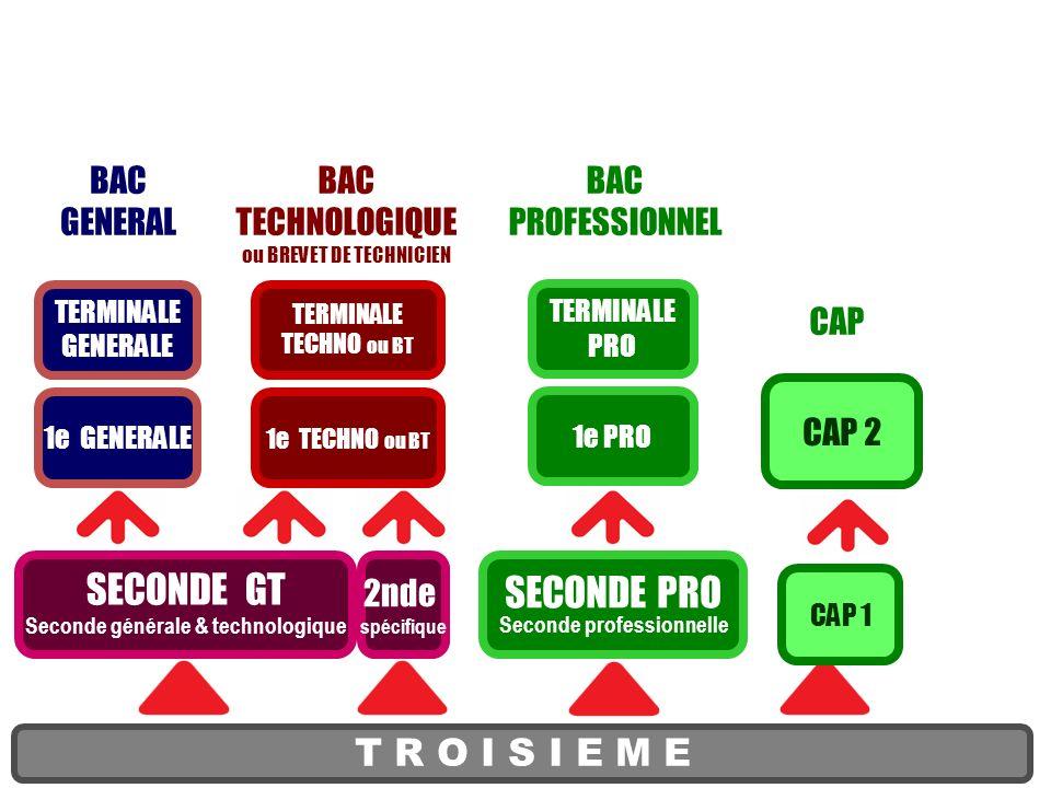 SECONDE PRO Seconde professionnelle T R O I S I E M E SECONDE GT Seconde générale & technologique 1e PRO TERMINALE PRO CAP 1 CAP 2 BAC GENERAL BAC TEC