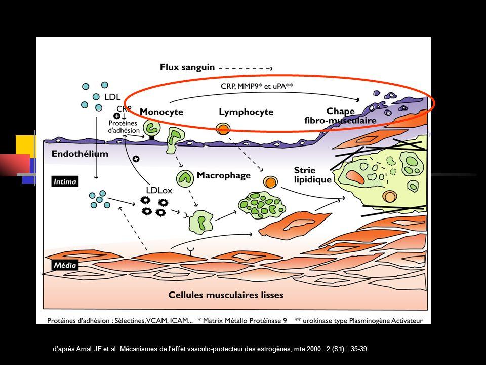 daprès Arnal JF et al. Mécanismes de leffet vasculo-protecteur des estrogènes, mte 2000. 2 (S1) : 35-39.