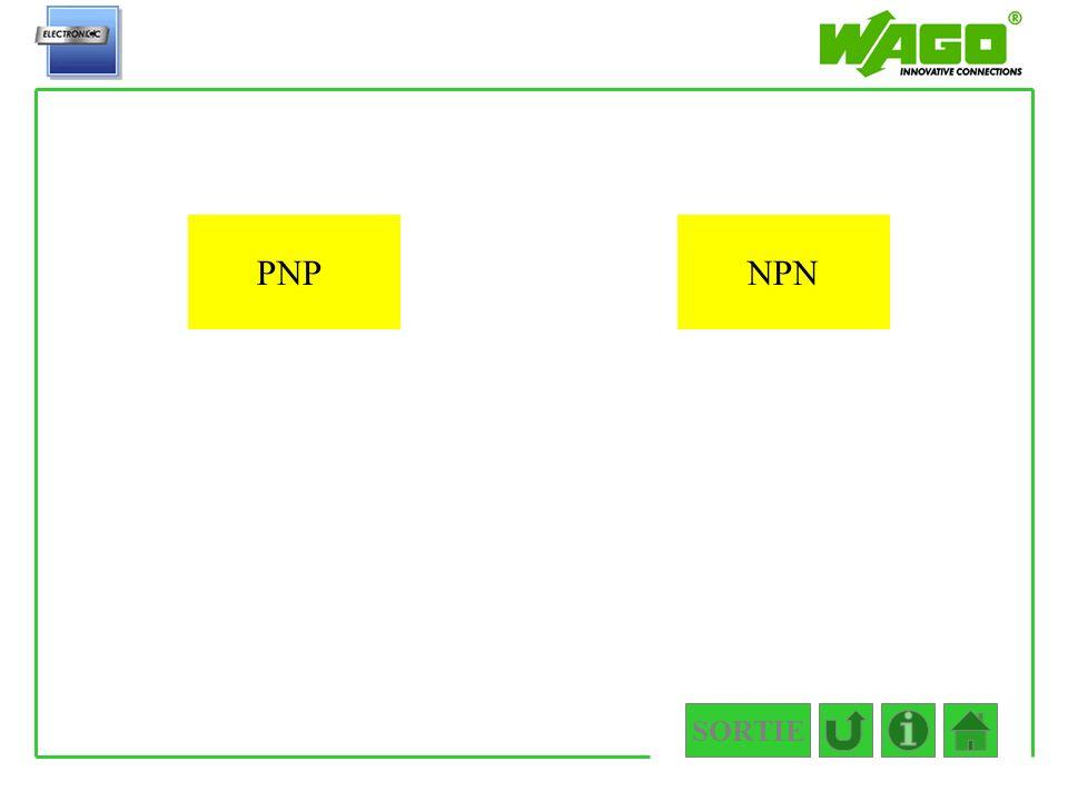 SORTIE 4.1.1 PNPNPN
