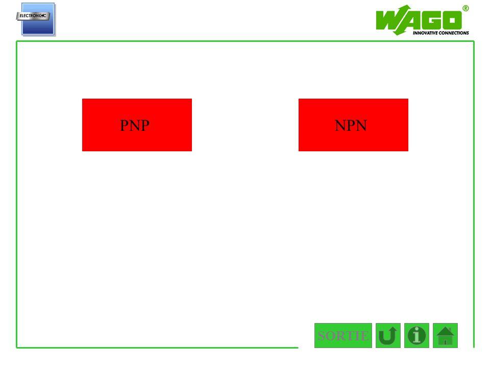 SORTIE 4.2.1 PNPNPN